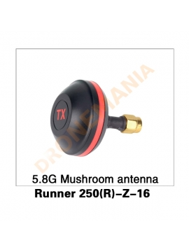 Antenna video Walkera 250 Advanced - Runner 250(R)-Z-16