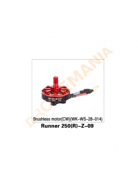 Motore CW Walkera Runner 250 Advanced - Runner 250(R)-Z-09
